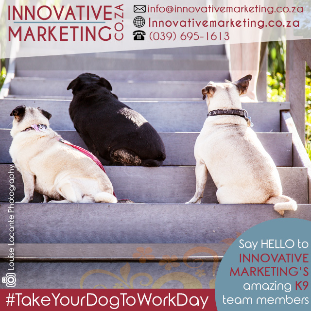 06 - June - Take your dog to work day (1)